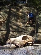 Rock Climbing Photo: Getting artistic on Greyskull