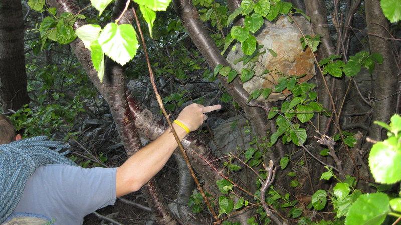 Rock Climbing Photo: Watch for rocks :)