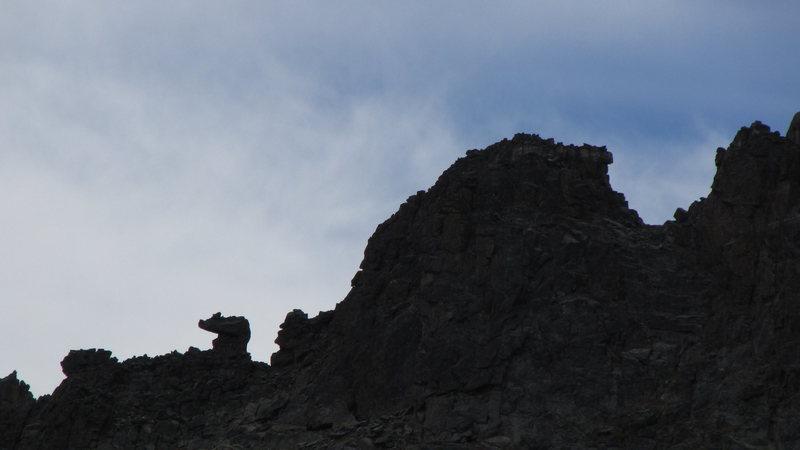 The pig, from Otis Peak.