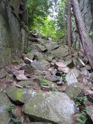 Rock Climbing Photo: looking up gully, takes to both sides of cliff fac...