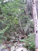 Rock Climbing Photo: Base of gully looking up, woodpecker holed tree on...