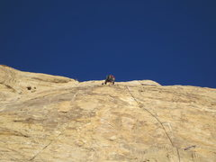Rock Climbing Photo: Tele photo top mantel moves about 30 from anchors