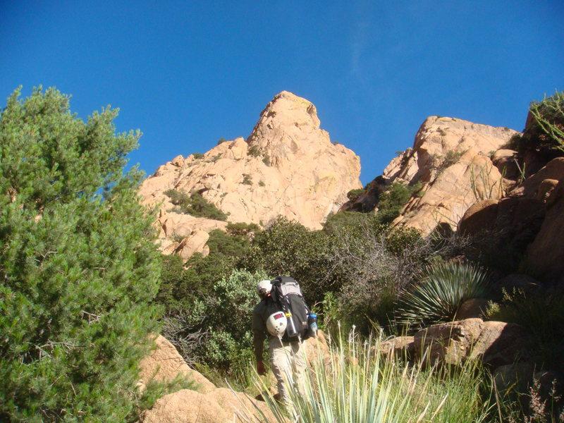 Rock Climbing Photo: 9/11/10 Shawn Swenson on approach to Wasteland.