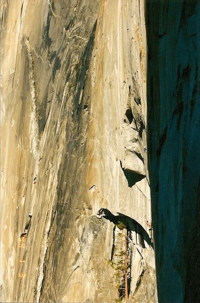 Rock Climbing Photo: Mike Nelson and Antoine on El Cap