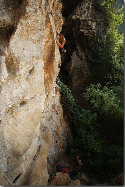 chicken cave