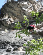 Rock Climbing Photo: Mark Mason starting the crux of Santaqueen Prom Qu...