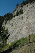 Rock Climbing Photo: A topo drawn upon Mark Purdy's photo, at the reque...