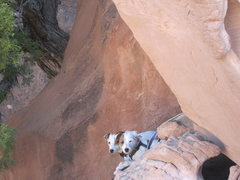 Rock Climbing Photo: What the $$@# is going on with these guys?