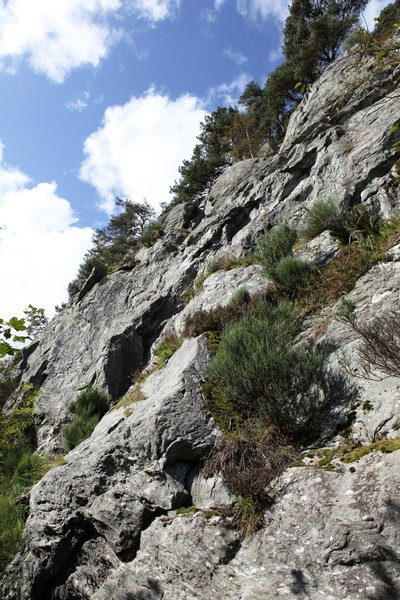Rock Climbing Photo: Main Face Left (Middle Topo)