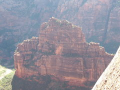 The Organ from the top of Angels Landing.