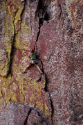 Rock Climbing Photo: #4 on Remission 5.9R, it has a couple of long runo...