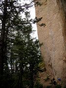 Rock Climbing Photo: THE GREAT WHITE BEHEMOTH .. great stone