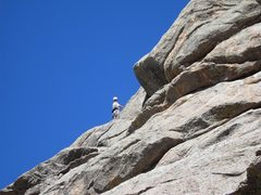 Rock Climbing Photo: Dave G. on an upper pitch of the Guide's Route.