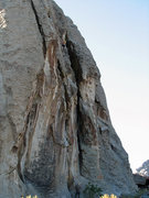 Rock Climbing Photo: Dan Zobell near the top of Latter-day Saints.