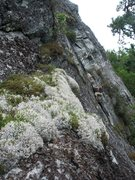 Rock Climbing Photo: Table Rock, Kevan H. on Second Stanza.