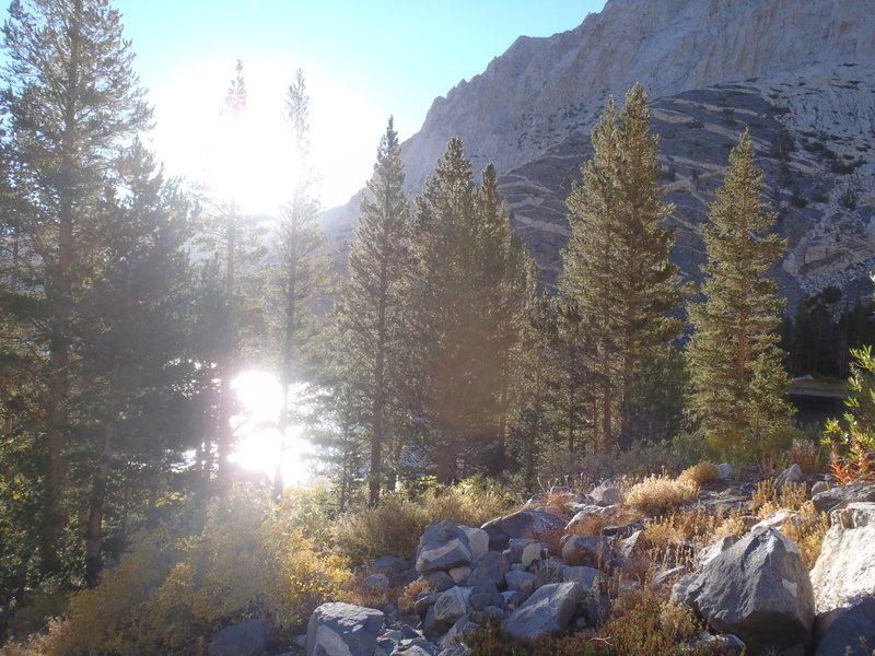 Bright morning sun on the approach to Feather Peak