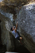 "Rock Climbing Photo: I'm calling it: ""No Bush Trimming Required&qu..."