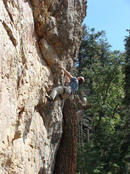 Rock Climbing Photo: at the redpoint crux. photo by jenna ashler.
