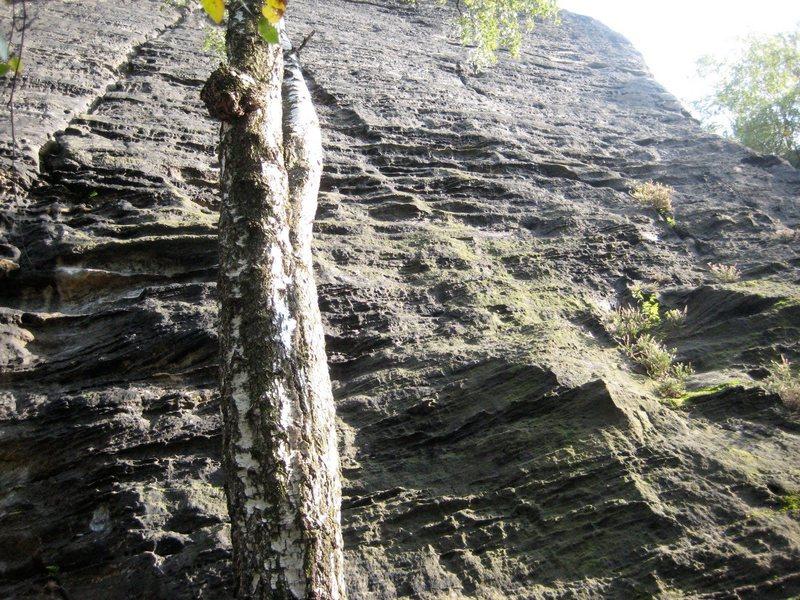 Rock Climbing Photo: Adrenaline, Mala Basta Wall