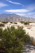 Rock Climbing Photo: Mt. San Jacinto