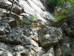 Rock Climbing Photo: The tree root.  Find this root and you're as good ...