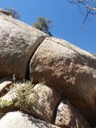 Rock Climbing Photo: Short/burly offwidth on the first pitch.