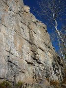 Rock Climbing Photo: Showing the middle routes of the Homestake Wall.