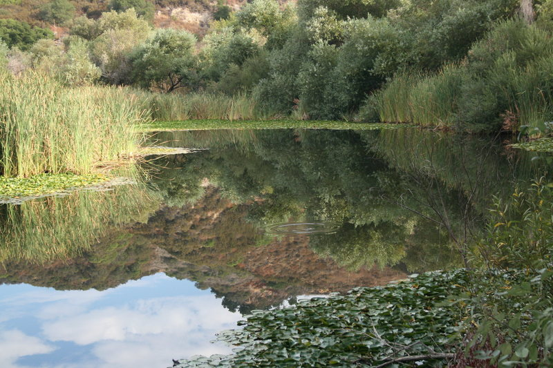 Rock Climbing Photo: Some nice reflections on the lake today.  And the ...