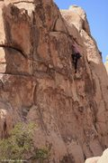 Rock Climbing Photo: Climber on Laeger Domain at the Summit or Plummet ...