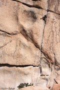 Rock Climbing Photo: Double Cross