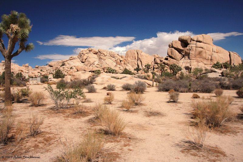 Rock Climbing Photo: Spectacular day