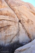 Rock Climbing Photo: Left Ski Track