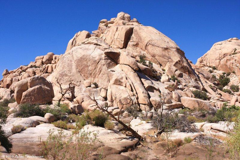 Rock Climbing Photo: Rat Rock