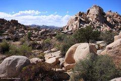 Rock Climbing Photo: Gorgeous day