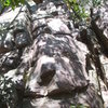 """This is """"East Pillar"""" 5.5 Climb the east corner and finish on the slab above."""