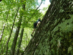 Rock Climbing Photo: Onsighting Outer Bounds