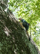 Rock Climbing Photo: Both routes join and finish up the same.  I'm midw...