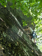 Rock Climbing Photo: James looking up to clip the last bolt above the o...