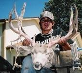 06 archery deer