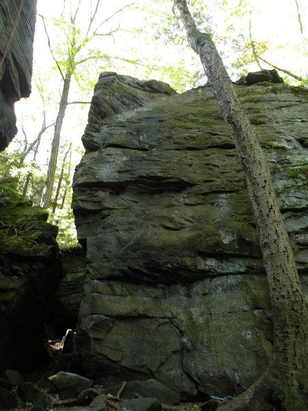 Rock Climbing Photo: Beginners' Face