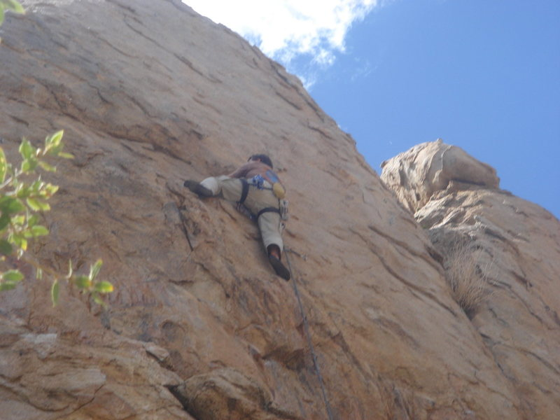 Rock Climbing Photo: mid-section of Doc's  Photo by Leslie King