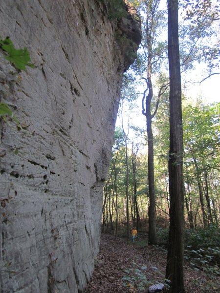 LaGrange Wall