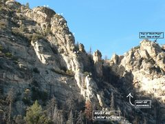Rock Climbing Photo: Must Be Likin' Lichen