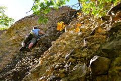Rock Climbing Photo: Fall leaves on Mylanta