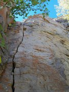 "Rock Climbing Photo: The crack, ""Coco's Lichen It,"" shares sh..."