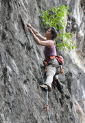 Rock Climbing Photo: sport climbing in Luang Prabang, Laos