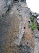 "Rock Climbing Photo: The line of ""Owliola"" 10a"