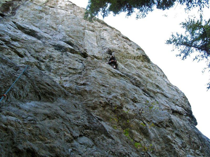 Rock Climbing Photo: Near the top of Slaborigine