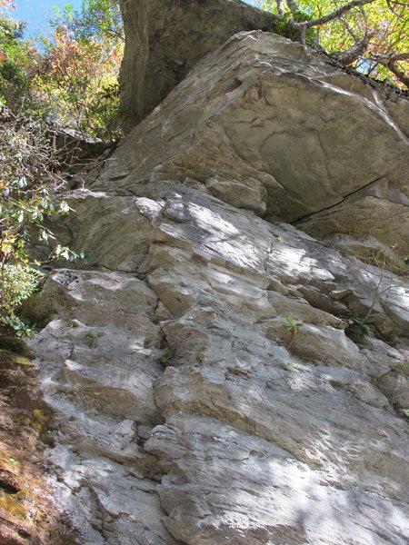 Rock Climbing Photo: Son of White Trash