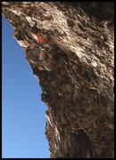 "Rock Climbing Photo: Dan Osman on the FA of ""Psycho Monkey"". ..."